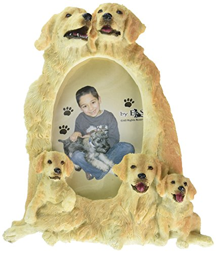 Golden Retriever Picture Frame Holds Your Favorite 3 x 5 Inch Photo, Hand Painted Realistic Looking Golden Retriever Family Surrounding  Your Photo. This Beautifully Crafted Frame is A Unique Accent To Any Home or Office. The Golden Retriever Picture Frame Is The Perfect Gift For Golden Retriever Owners And Lovers! (Best Looking Golden Retriever)