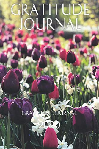 PQP Gratitude Journal for 2020: Paperback 100 Pages 6 X 9 Inch.: PQP Journals are the most organized and beautiful journals.  Start your day with … to inspire your creativity and gratitude!