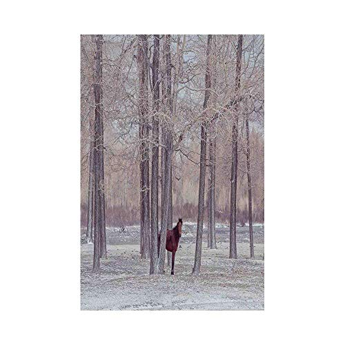 Polyester Garden Flag Outdoor Flag House Flag Banner,Equestrian Decor,Lonely Horse in Forest Stands behind Leafless Trees Winter Snowy Panorama,Brown Beige,for Wedding Anniversary Home Outdoor Garden