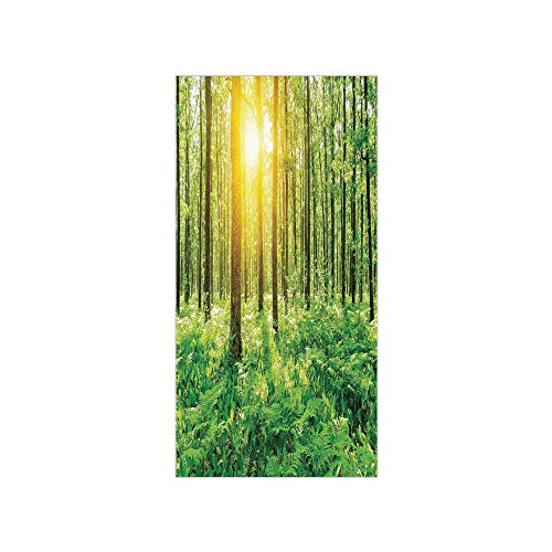 (3D Decorative Film Privacy Window Film No Glue,Woodland Decor,Forest Springtime Freshness Foliage Sunbeams Sunrise Nature View Scene,for Home&Office)