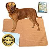 Hiyapup Washable Pee Pads for Dogs, 2-Pack, Large (36'x42'), Premium Super Absorbent & Non-Skid Reusable Puppy Pad, Whelping Pad, Senior Dog Incontinence