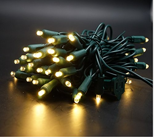 Led Christmas Lights 25 in US - 6