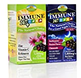 Cheap Sambucus Immune 24/7 Day and Night Formula | Immune 24/7 Plus | Immune 24/7 pm | Berry Flavor | Combo Pack(Day and Night) | Two Boxes | for Immune Support | Black Elderberry Extract | Vitamin C and