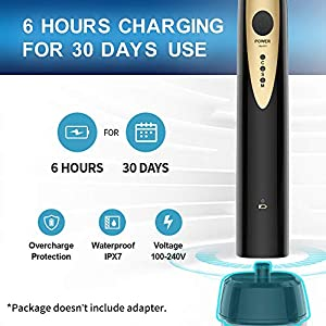 Fairywill Sonic Electric Toothbrush for Adults, with 2 DuPont Brush Heads Teeth Whitening Ultra-Powerful Cordless Rechargeable Dentist Recommended Whitening Toothbrush, Over 30 Days Long Battery Life