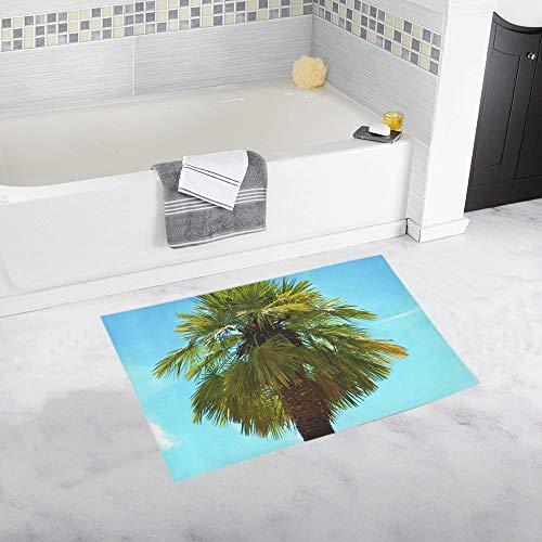 Palm Plant Fan Palm Palm Tree Sky Summer Custom Non-slip Bath Mat Rug Bath Doormat Floor Rug For Bathroom 20 X 32 Inch -