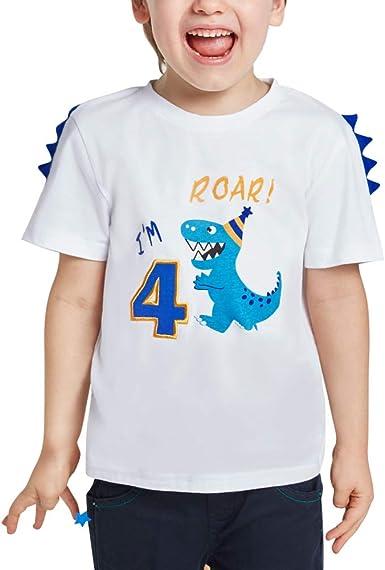 AMZTM 4 Años Dinosaurio Camiseta Cumpleaños - Niños Manga Corta Top: Amazon.es: Ropa y accesorios