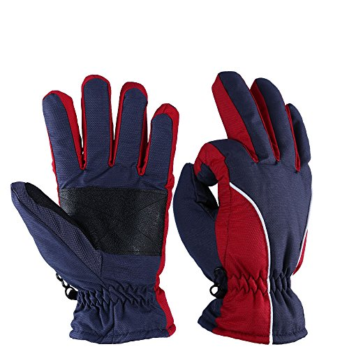 Womens Photographer Black Leather (Warm Gloves, OZERO -20°F Cold Proof Winter Snow Skiing Glove for Men & Women & Young - Reinforced PU Palm and TR Cotton Insert - Water Resistant & Windproof - Berry-Red)