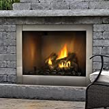 47 fireplace - Napoleon GSS42CFN 47