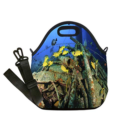 Lunch Box Insulation Lunch Bag Large Cooling Tote Bag Neoprene Insulated Lunch Tote Bag Snapper on the wreck of an underwater oil rig Lunch Bag- Insulated and Reusable Artful Design -