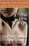 The Pink Triangle (Kari's Love Book 1)