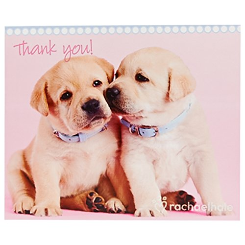 - BirthdayExpress Rachael Hale Glamour Dogs Party Supplies - Thank-You Notes (8)