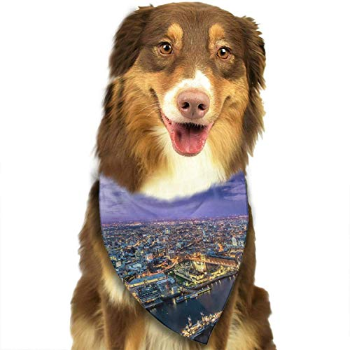 FFR EGM HAQSK CUFD Eco-Friendly London Scarf Pet Fantasy Suit Printing Kerchief,Soft Head Scarfs Accessories Pet bib Pet Supplies
