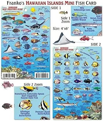 Franko Maps Oahu Reef Creatures Fish ID for Scuba Divers and Snorkelers