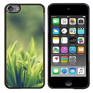 EJOOY---Cubierta de la caja de protección para la piel dura ** Apple iPod Touch 6 6th Touch6 ** --Weed Verde
