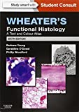img - for Wheater's Functional Histology: A Text and Colour Atlas (FUNCTIONAL HISTOLOGY (WHEATER'S)) book / textbook / text book