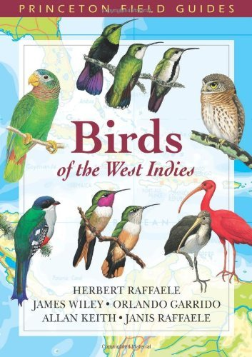 Birds of the West Indies (Princeton Field Guides) by Herbert A. Raffaele (2003-09-22)