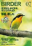 BIRDER(バーダー)2017年7月号 オオルリ、キビタキ、サンコウチョウ/部屋で楽しむバードウォッチング