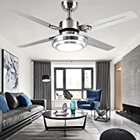 RainierLight Modern Ceiling Fan 4 Stainless Steel Blades Remote Control LED 3 LED Changing Light (White/Warm/ Yellow) for Indoor Quiet Energy Saving Electric Fan/Decoration (48inch)