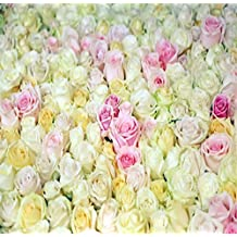 Pink and Ivory Flowers Backdrop for Wedding Photography 10x10 Large Photographic Background Cloth Custom Shoot Props