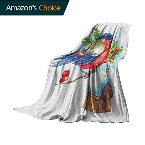 - Rowan Fluffy Blanket,Merry Christmas Composition with Cute Bullfinch Holly Pine Cone Bird House in Winter Colorful Home Couch Outdoor Travel Use Blanket,30