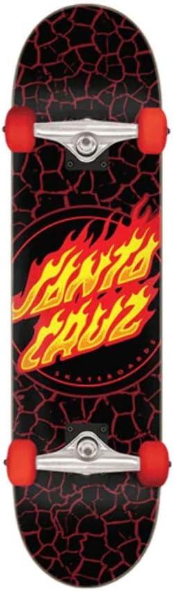Santa Cruz Skateboards Complete Flame Dot Black 8.0