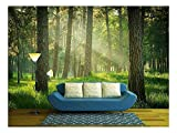 wall26 - Forest - Removable Wall Mural | Self-Adhesive Large Wallpaper - 100x144 inches