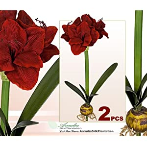 "TWO Artificial 24"" Amaryllis Bendable Flowers for Christmas Decoration 67"