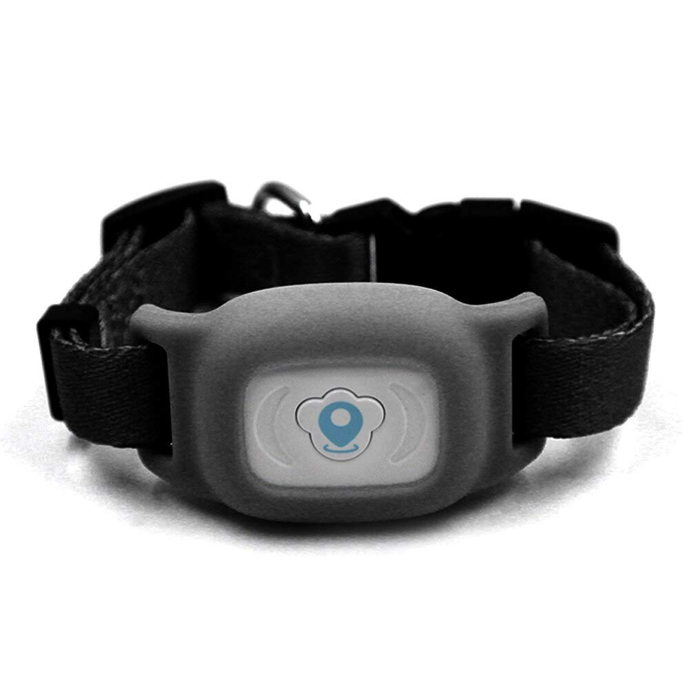 Helen-Box - Intelligence Waterproof IP67 Mini Pet GPS Tracking Tracker Collar for Dog Cat AGPS LBS SMS Positioning Pets Track Device