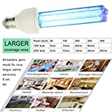 UV germicidal Light Bulb 15W UVC Compact lamp