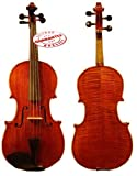 D'Luca CA400VA-16 16-Inch Orchestral Series
