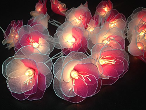 String Lights White pink Fairy Wedding product image