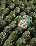 Ridley's AGME001 Avocado Smash! 71Piece Family