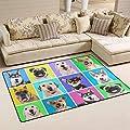 Portraits of Cute Dogs Funny Door Mat Entrance Front Doormats Home Floor mats Indoor Outdoor Decor Rugs Carpets Non-Slip