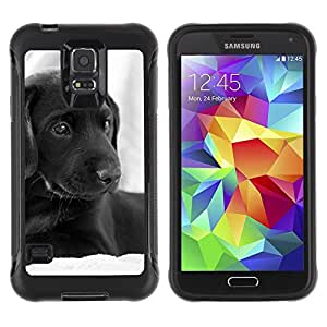 Suave TPU GEL Carcasa Funda Silicona Blando Estuche Caso de protección (para) Samsung Galaxy S5 V / CECELL Phone case / / Curly Coated Black Short Hair Retriever Dog /