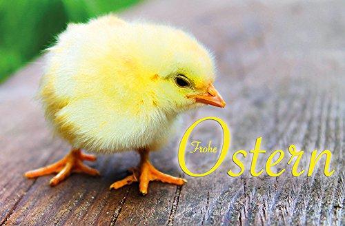 50 Gru/ßkarten zu Ostern Osterhase K/üken 6 Motive Osterkarten Klappkarten Umschl/äge 130-3579