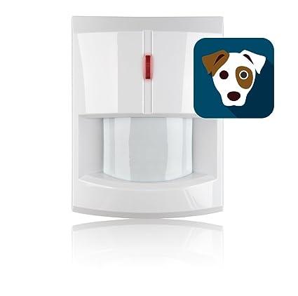 Blaupunkt Security IRP-S1L - Sensor/Detector de Movimiento Inalámbrico Inmune a Mascotas hasta