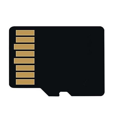 Karenon Tarjeta Micro SD 256 GB, microSDXC 256 GB Class 10 Tarjeta de Memoria + Adaptador (FT135-KD)
