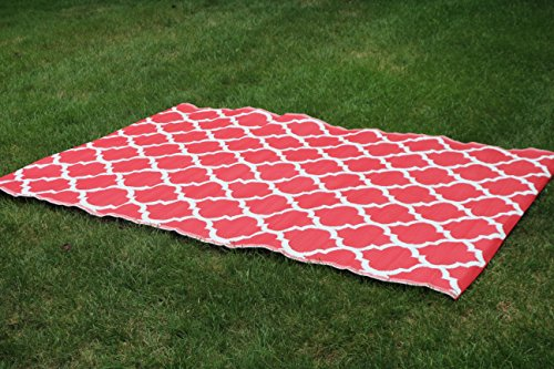 (Santa Barbara Collection 100% Recycled Plastic Outdoor Reversable Area Rug Rugs White red Trellis san1001red 5'11 x 9'3 - Made in USA)