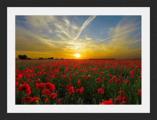Sunset over Poppy Field Framed Wall Art Wall Picture Frames Wall Decor Pictures for Living Room Bedroom Office 30x40 cm