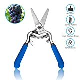 SPEEDWOX 6'' Pruning Shears Grape Trimmers Garden Scissors Professional Hand Pruners Metal Shears Gardening Tool for Fruit Tree Secateurs Forged High Carbon Steel Straight Blade Safety Lock
