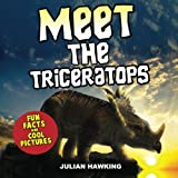 Meet The Triceratops: Fun Facts & Cool Pictures