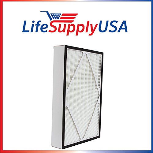 (LifeSupplyUSA 2 Pack True HEPA Replacement Filter Fits Hamilton Beach 04913, 04162, and 04163)