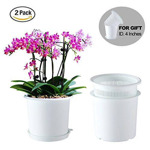 Meshpot Plastic Orchid Pot with Holes,Inner Dia. 6.3 inches – 2 Inner Pot,2 Outer Pot,2 Tray (2PCS White) For Sale
