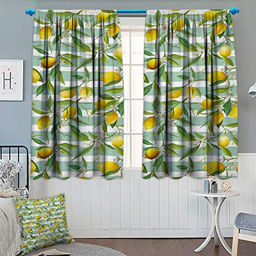 Chaneyhouse Nature Thermal Insulating Blackout Curtain Blooming Lemon Tree on Striped Paintbrush Background Evergreen Art Patterned Drape for Glass Door 63