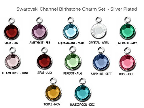 12pc Set of Swarovski Birthstone Channel Charms Silver Plated