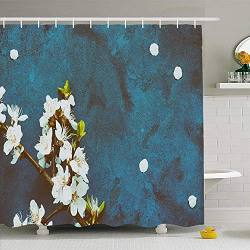 (Ahawoso Shower Curtain 72x72 Inches Closeup Blue April White Apricot Spring Flowers On Cherry Apple Nature Bloom Blooming Blossom Design Waterproof Polyester Fabric Bathroom Curtains Set with Hooks)