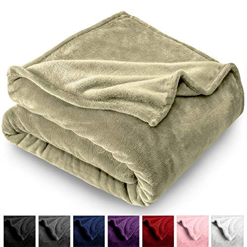 Bare Home Microplush Velvet Fleece Blanket - Full/Queen - Ultra-Soft - Luxurious Fuzzy Fleece Fur - Cozy Lightweight - Easy Care - All Season Premium Bed Blanket (Full/Queen, Sage)