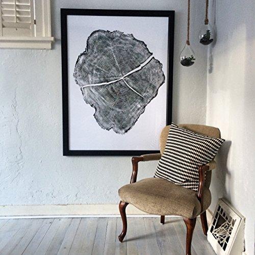 Huge Black Locust Tree Ring Print 36x48