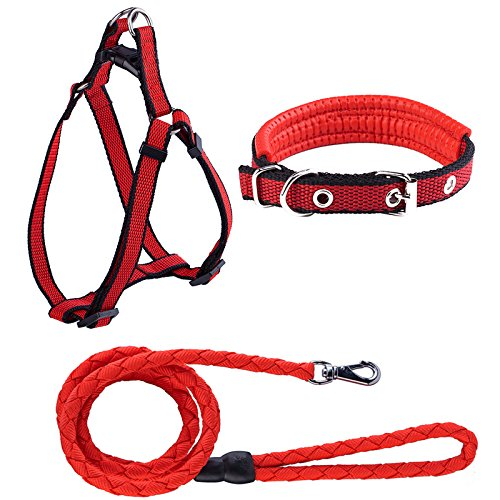 Beker Dog Leash Harness Collar Set,Durable Nylon Braided Leash No Pulling Adjustable Harness Soft Padded Collar for Small Dog/Puppy/Cat Red(Pack of 3)