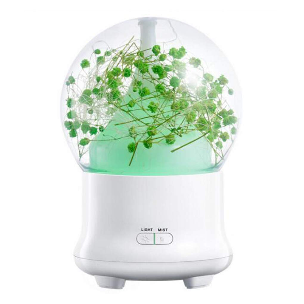Everlasting Flower Mist Humidifier,Ultrasonic USB Pwered Portable Mini Desktop Essential Oil Diffuser with LED Night Light and Silent for Bedroom,Office,Baby Room AQ-UK